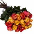 bukiet z czerwonych roz zoltych roz