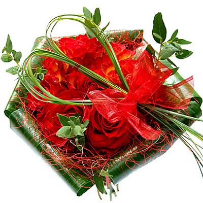czerwone roze
