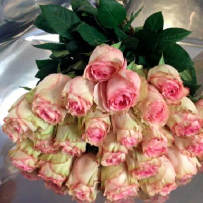 bukiet z jasnorozowych roz