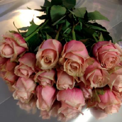 bukiet rozowych roz