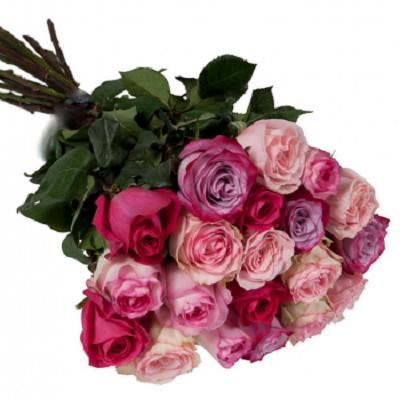 bukiet z kolorowych roz