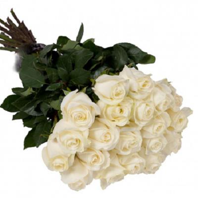 bukiet z białych roz